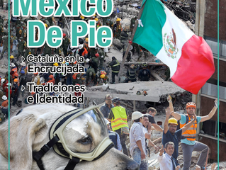 México de pie. Noviembre-Diciembre 2017. Año 7. Núm. 46