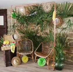location décor tropical