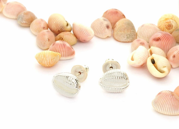 Cowrie Stud Earring, Silver in 3 Sizes