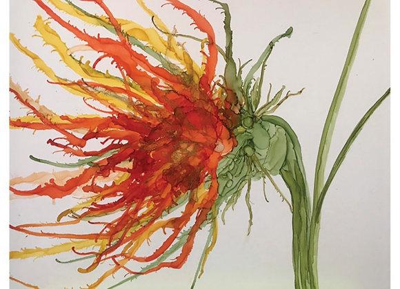 Vibrant Orange Windblown Flower