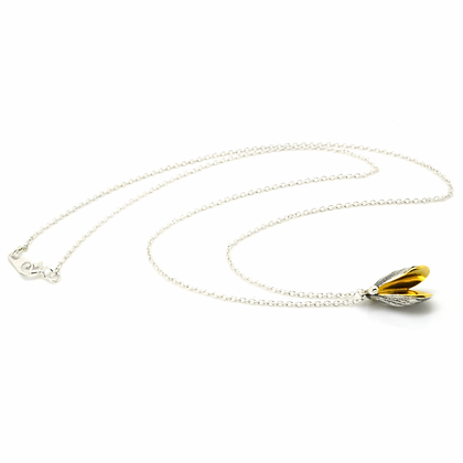 Mussel necklace
