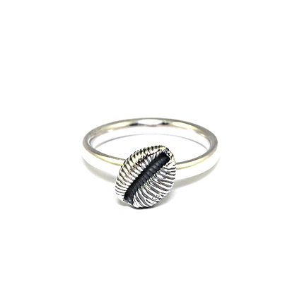 Cowrie Ring, Oxidised Silver