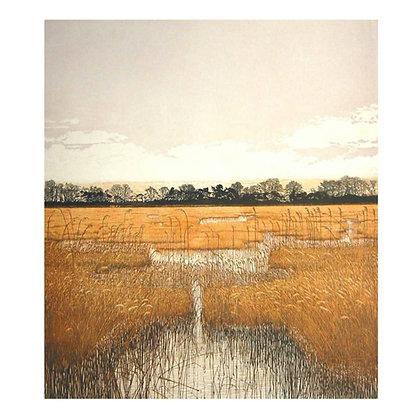 Marsh Waters