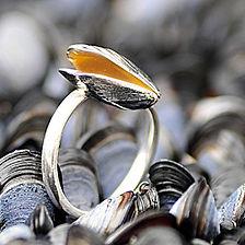 mussel_header.jpg