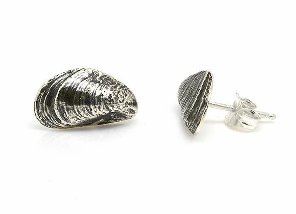Single shell mussel stud earrings
