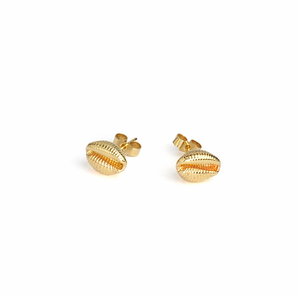 Cowrie Stud Earrings, Gold Plated