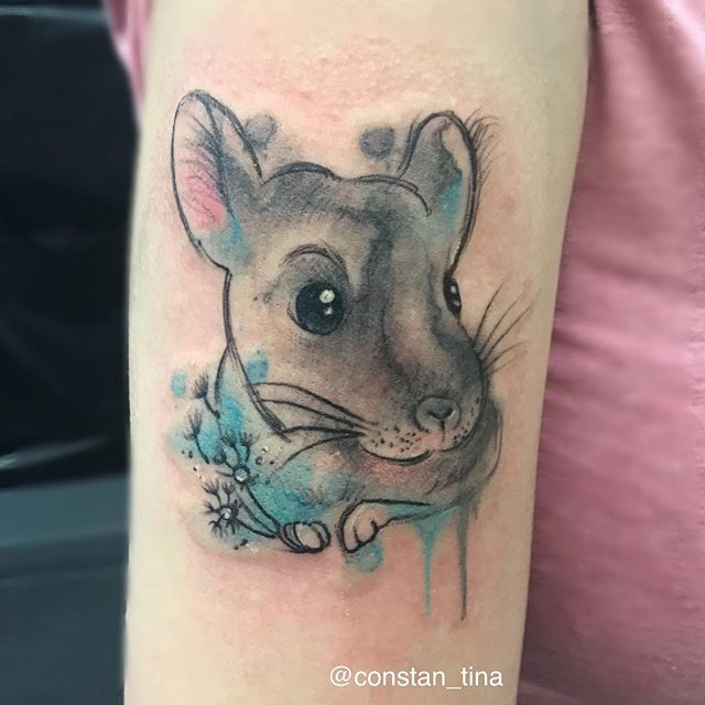 Did this cute chinchilla Tattoo at the bamberg tattoo convention 💜 #watercolortattoo #tattoo #chinc
