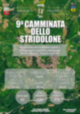 Poster per Stridolone.jpg