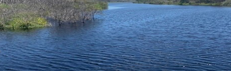 The tea tree lake close by.