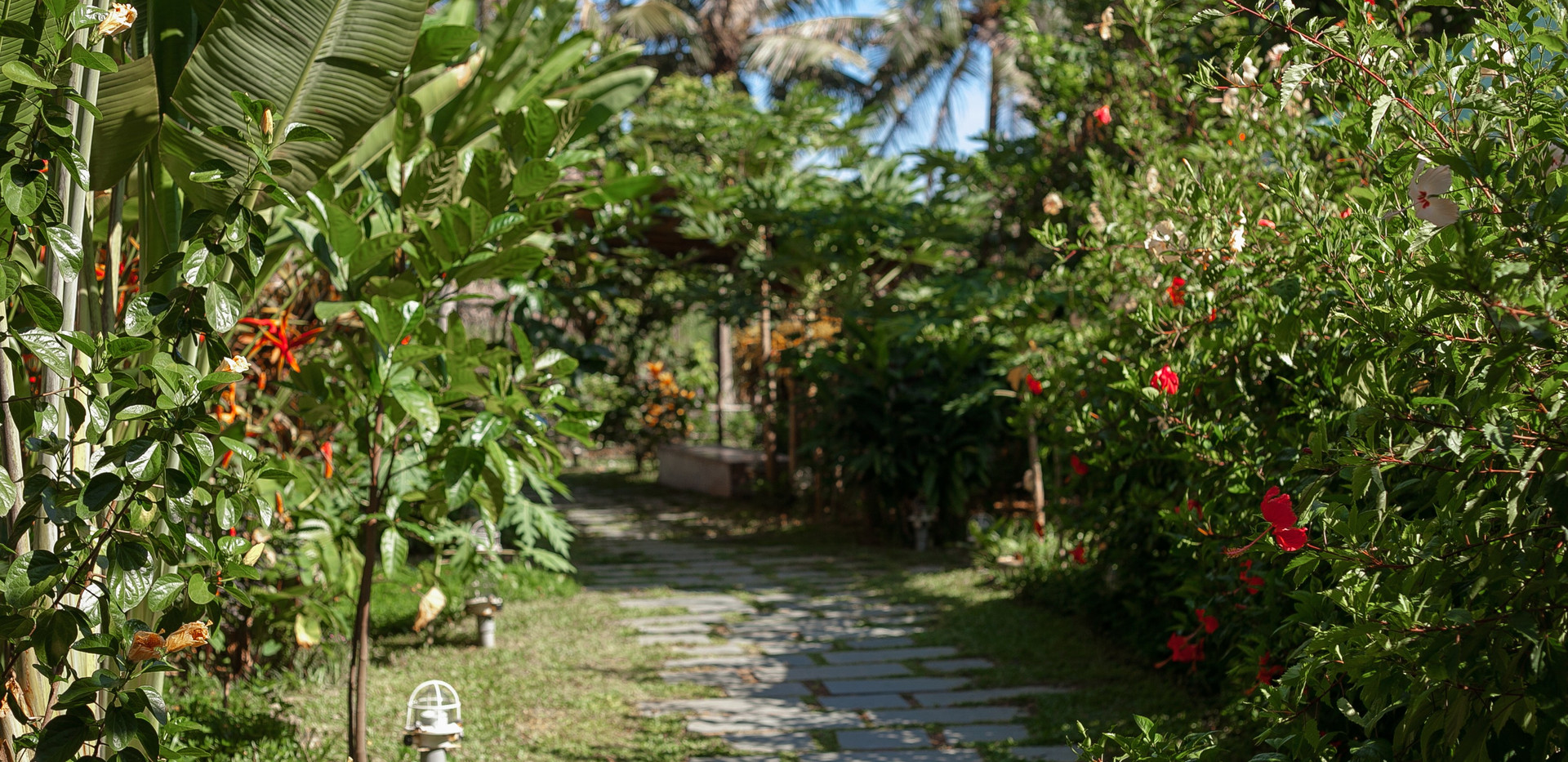 garden three.jpg