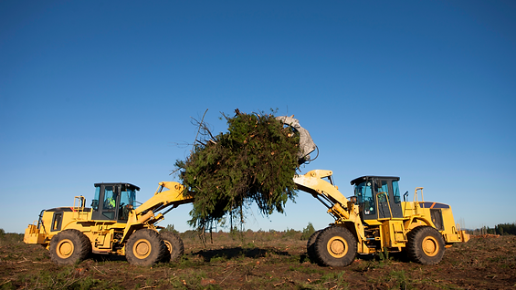 2 Tree removal machine.png