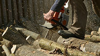 Man using a small chainsaw.jpg