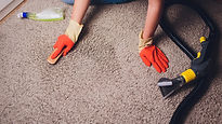 Carpet cleaning with gloves.jpg