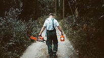 Man going to cut a tree.jpg