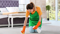 Carpet cleaning lady.png