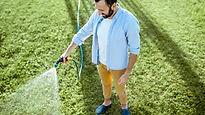 Man in blue shirt watering his lawn.jpg