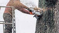 Man using a chainsaw.jpg