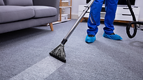 Professional carpet cleaning.png