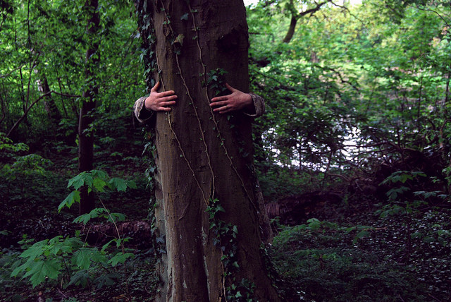 Feeling Down? Go Hug a Tree