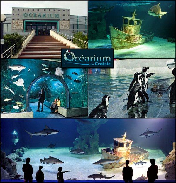 Ocearium Croisic