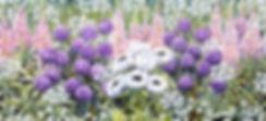 junibed banner 2018.jpg