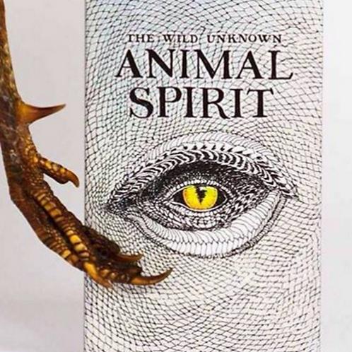 Wild Unknown Spirit Animal Deck & Book