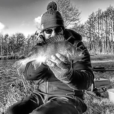 Skretting Fish Feeds