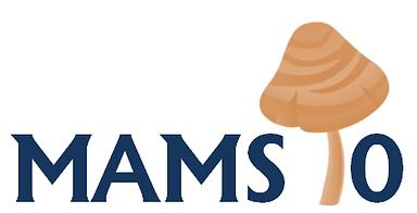 Mams10 logo.png