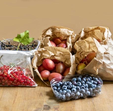 Summer/Autumn - Fresh Fruit
