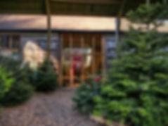 Christmas Barn - Compressed Edit.jpeg