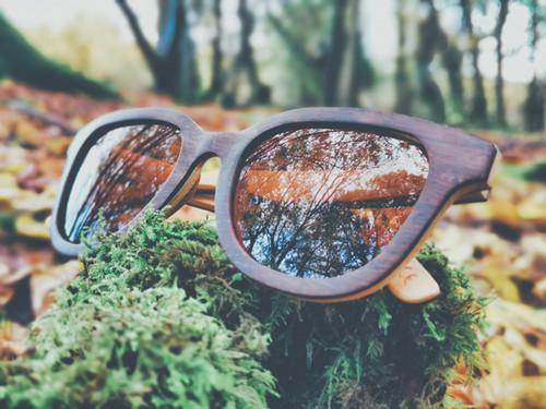 TreeLess Boatman Bamboo Sunglasses.jpeg