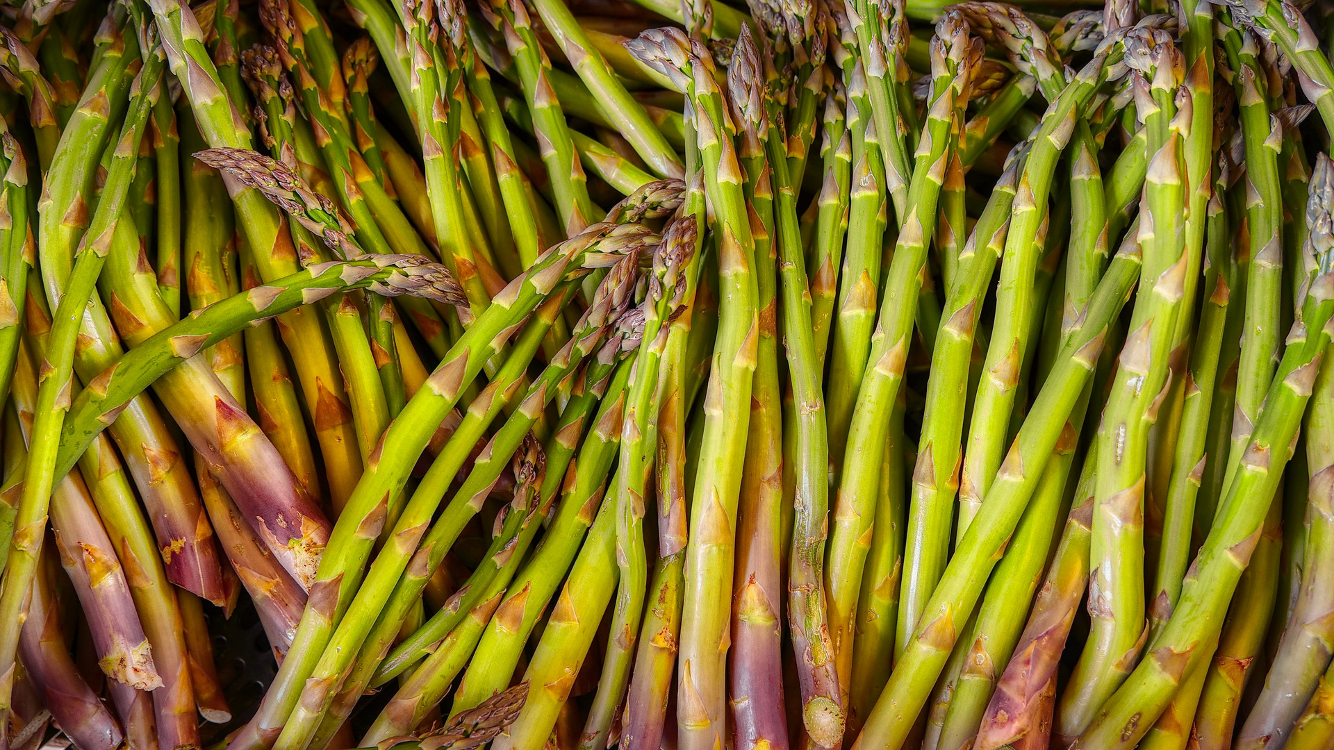 Spring - Freshly Cut Sussex Asparagus