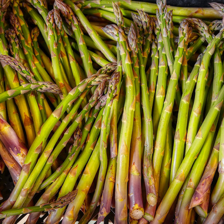 Spring - Freshly Cut Sussex Asparagus