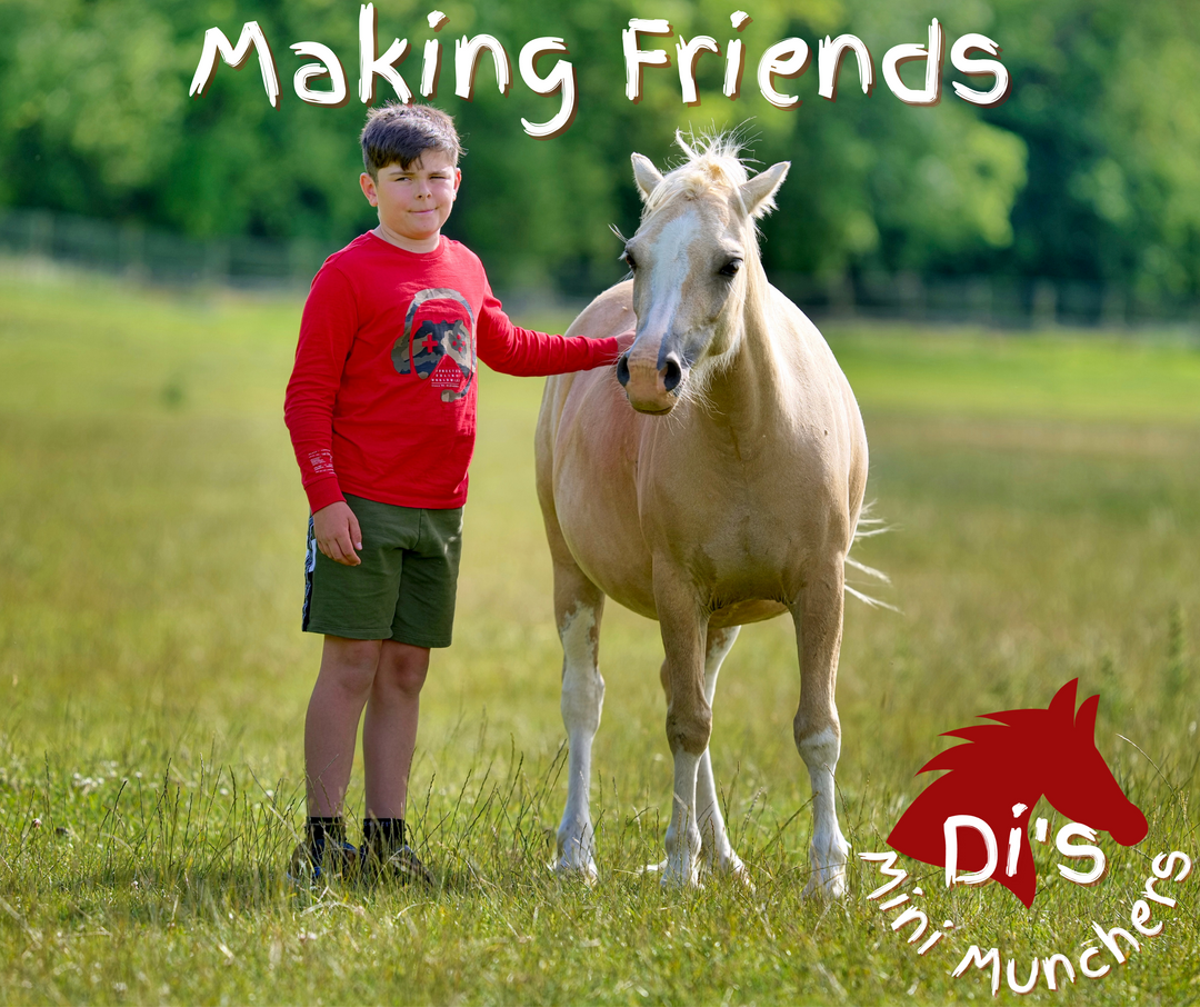 DMM - Making Friends - JWUK 2021.png
