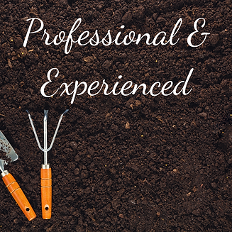 CGW-Professional & Experienced-JWUK.png