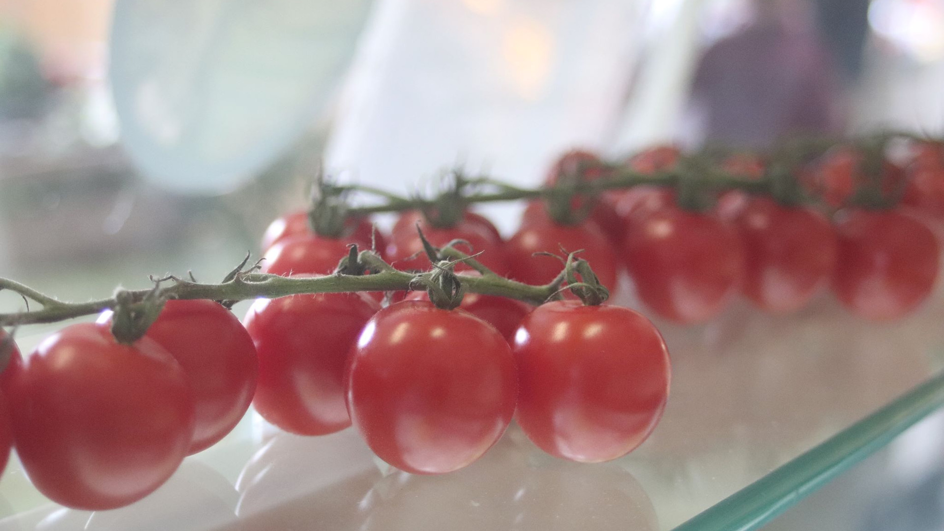 Summer - Fresh Vine Tomatoes
