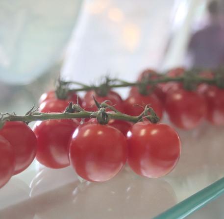 Summer - Fresh Vine Tomatoes