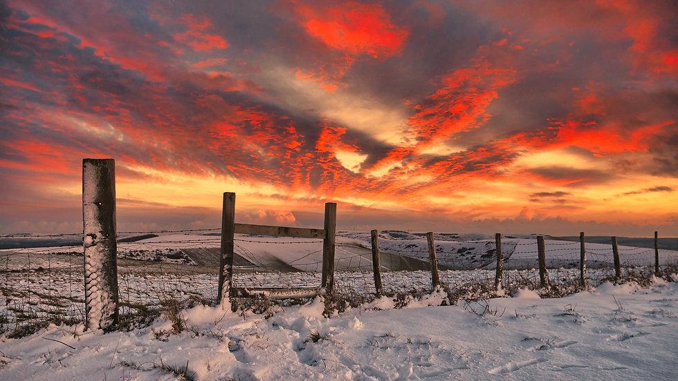 Winter Magic SNP JWUK 2021.jpeg