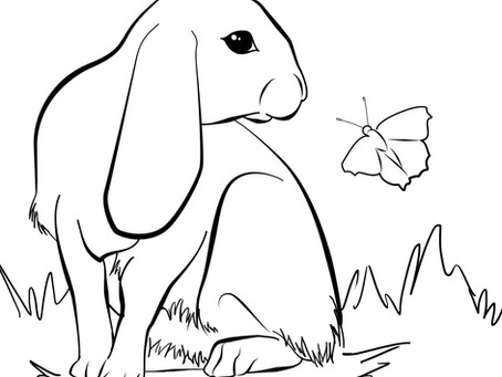 Readi-Board Rabbit Coloring Page