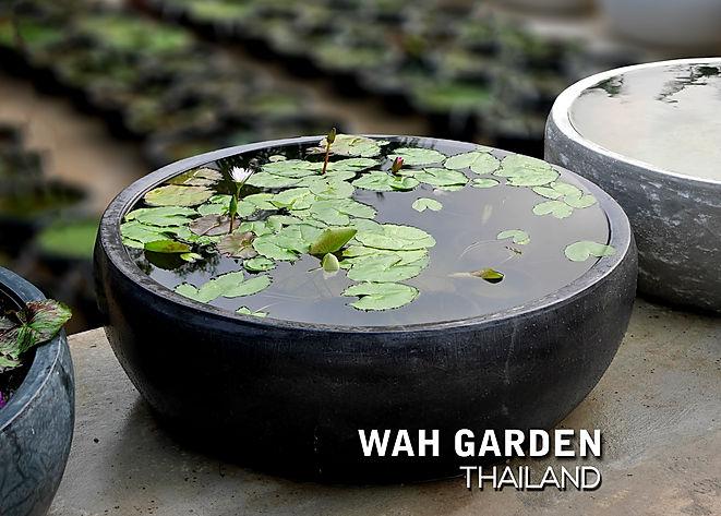 อ่างบัว cement pond 2.jpg