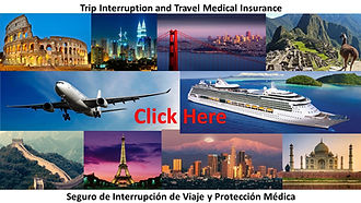 Travel Insurance Button.jpg