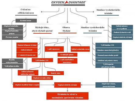 OA-Diagram