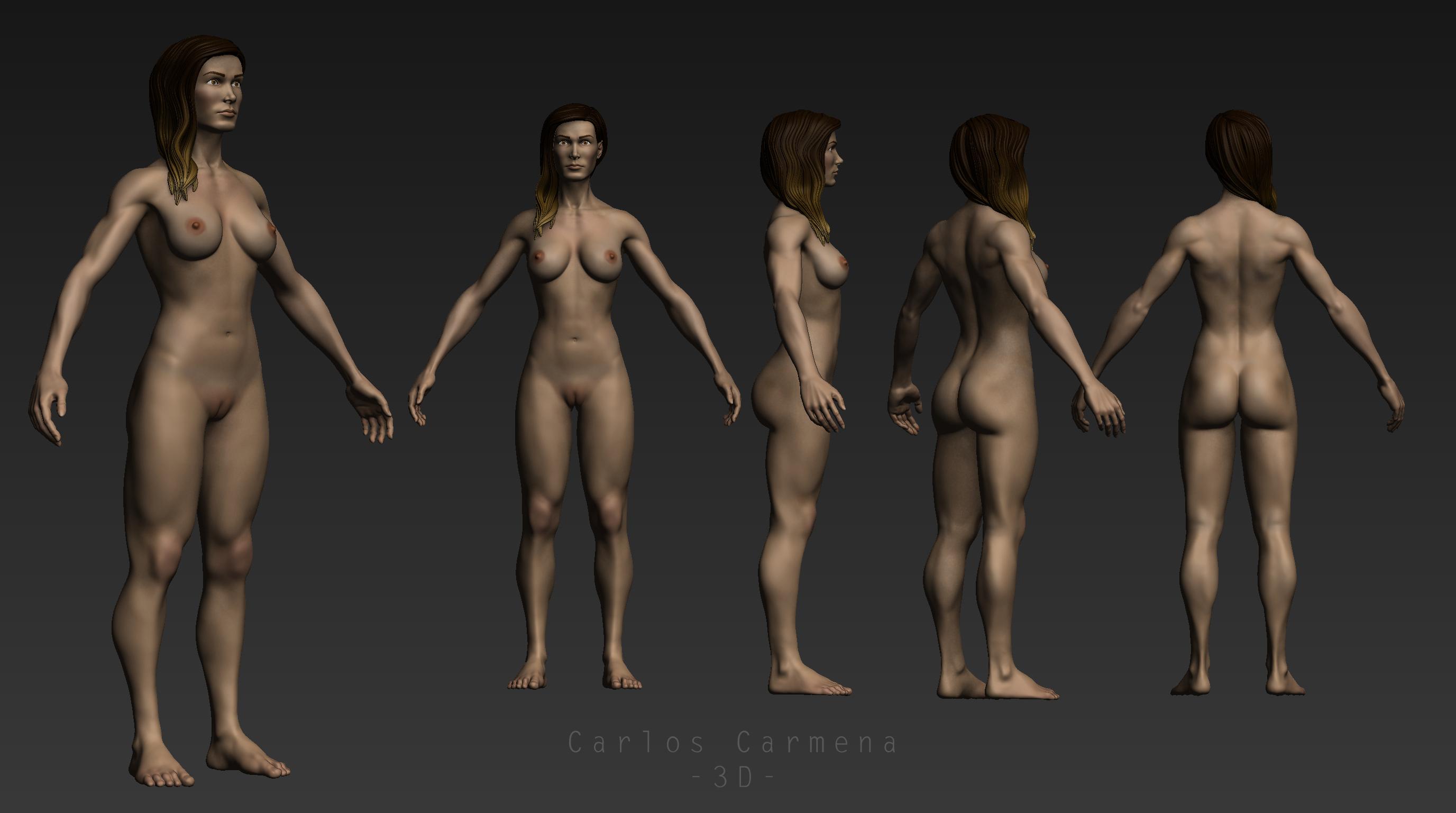 Base anatómica femenina,vistas color
