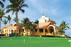 golf1b.jpg