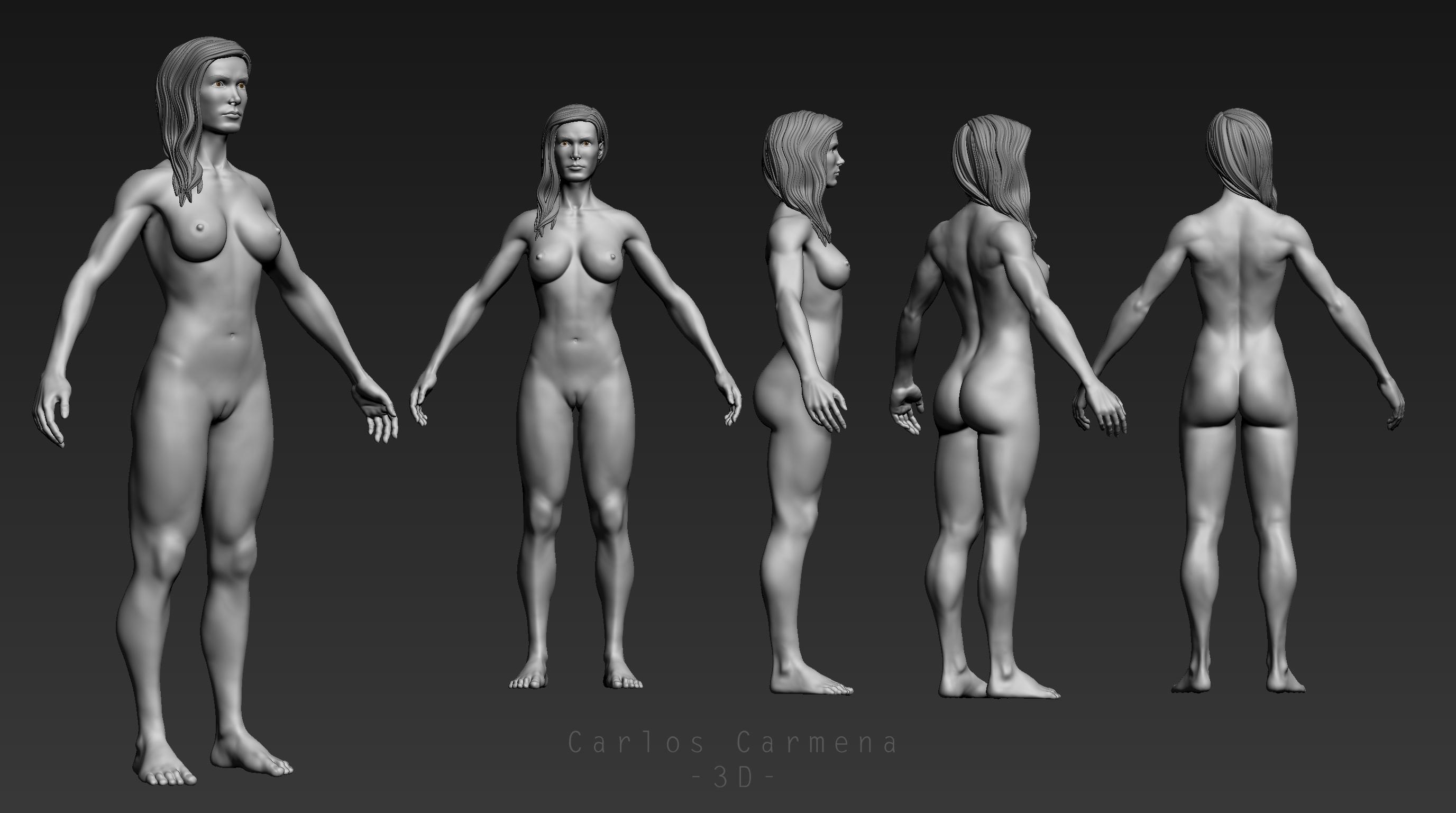 Base anatómica femenina, vistas.