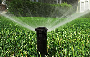 irrigationhead2015.jpg
