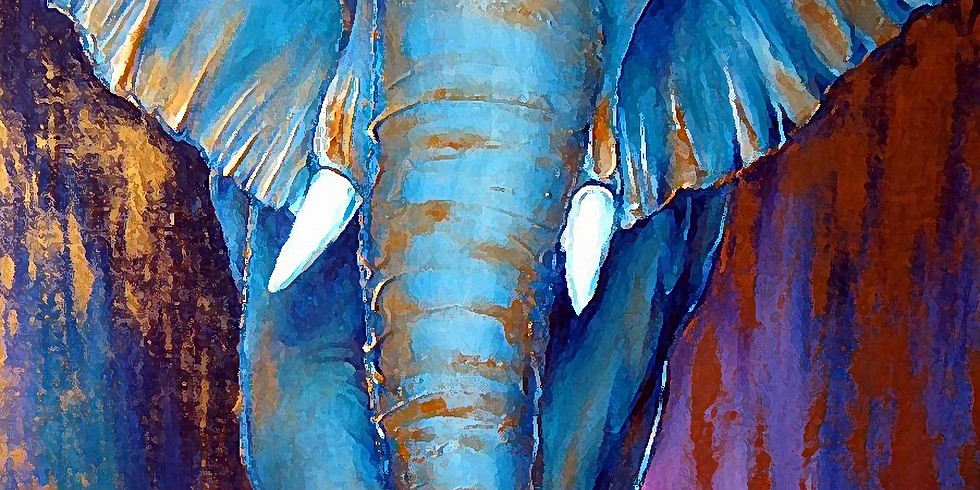 Слон   24 января пятница   2490 руб