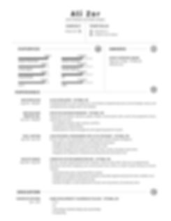Zor_Ali_WEB-Resume.png
