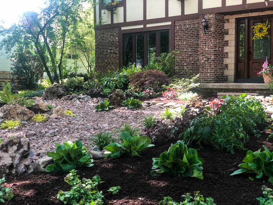 Shade Perennial Garden