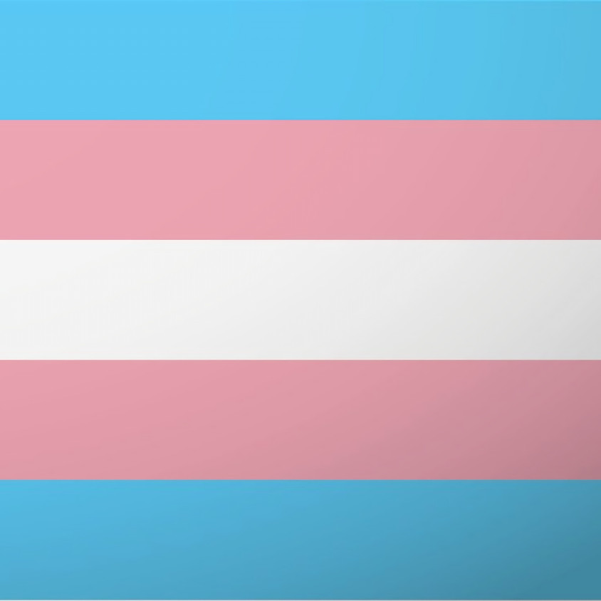 Maryland Trans*Unity Support Group